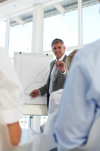 Stock Photo: 4294R-1598 Businesspeople having a presentation