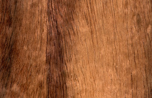 Stock Photo: 4297-1708 Koa wood grain (Acacia koa), Hawaii, USA
