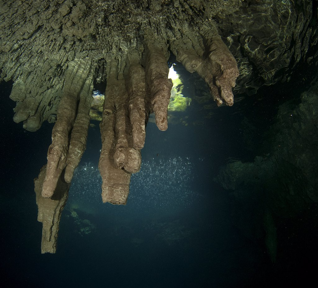 Stock Photo: 4299-1095 Surface of cenote 7 Bocas and rain, Puerto Morelos, Riviera Maya, Quintana Roo, Yucatan Peninsula, Mexico