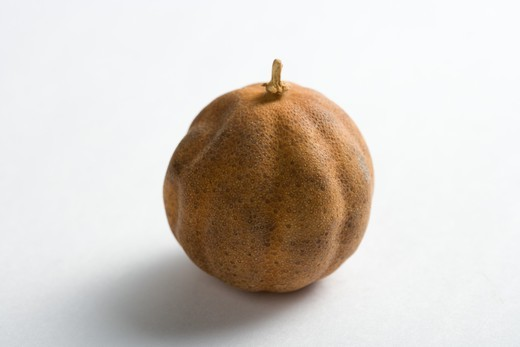 One dried lemon : Stock Photo