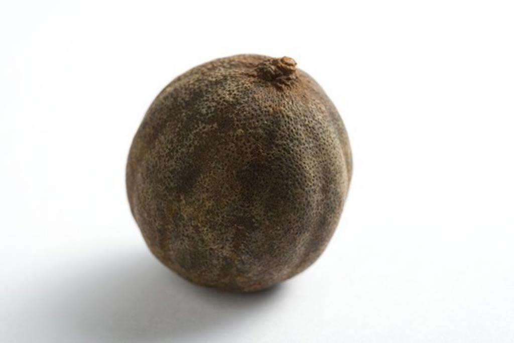 Stock Photo: 4303R-3092 One dried lemon