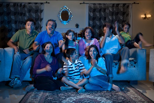 Stock Photo: 4303R-3450 Three generation family watching television, cheering