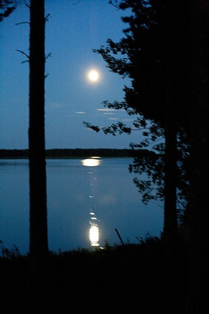Moonlight Reflecting on Water, Lulea, Sweden. : Stock Photo