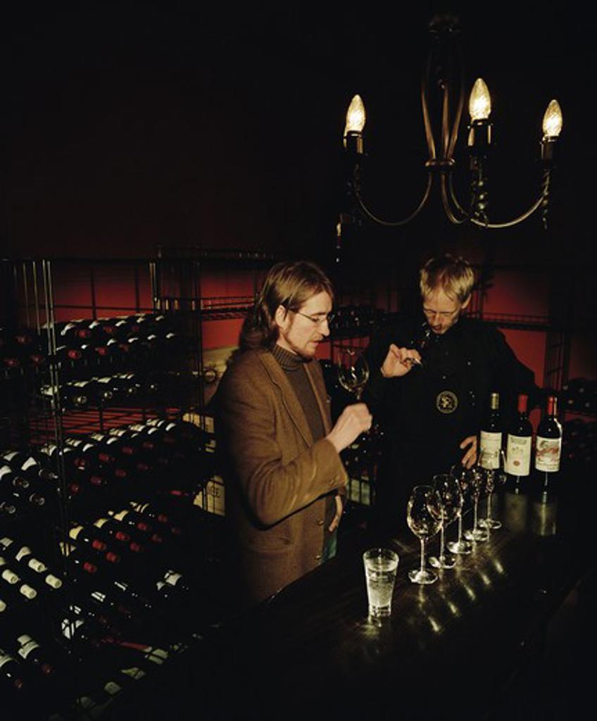 Wine-tasting, Sweden. : Stock Photo