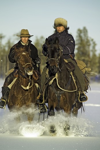 Stock Photo: 4306R-17654 Horseback riding in the snow, Sweden.