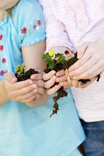 Stock Photo: 4306R-17716 Two girls holding flowers.