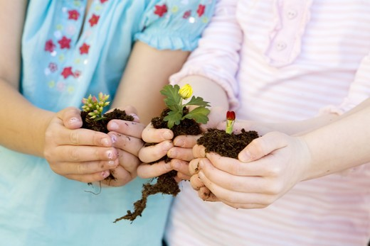 Stock Photo: 4306R-17717 Two girls holding flowers.