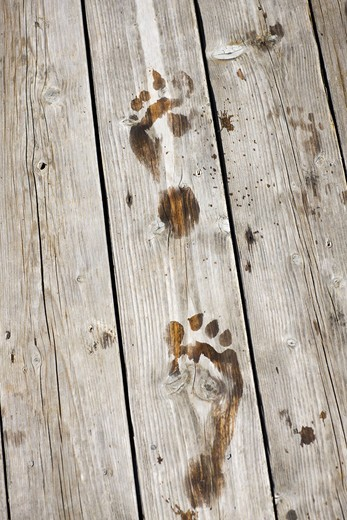 Footprints on a jetty, Sweden. : Stock Photo