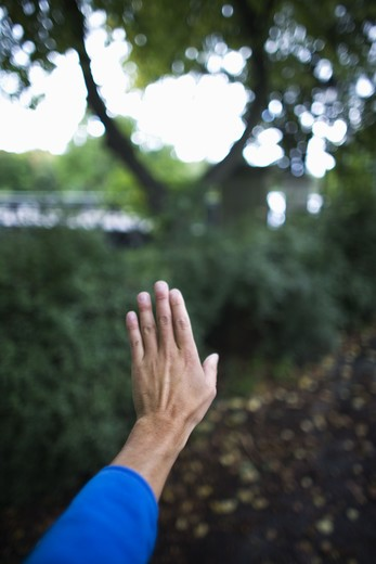 A hand reaching out, Sweden. : Stock Photo