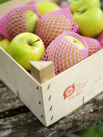 Stock Photo: 4306R-20585 Apples in a box, Sweden.