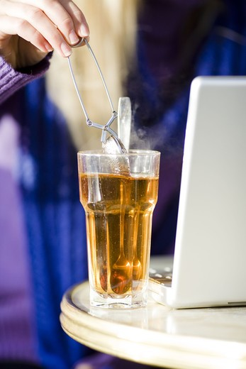 Stock Photo: 4306R-20840 Young woman sitting in a cafe with a cup of tea, using a laptop, Sweden.