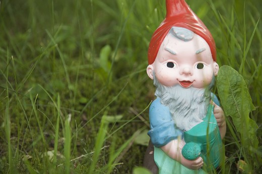 Stock Photo: 4306R-21152 A garden gnome in the grass, Switzerland.