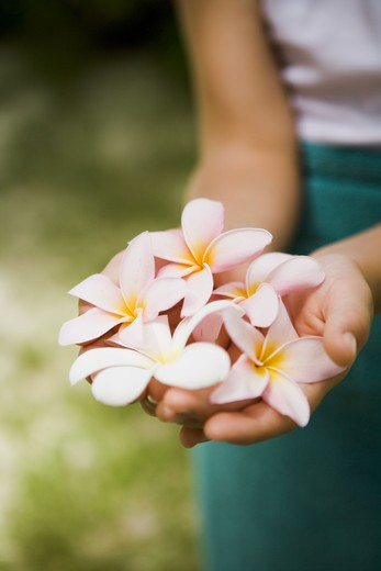 Stock Photo: 4306R-22298 A boy with flowers in his hands, the Maldives.