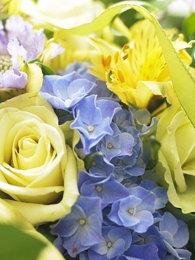 A grand bouquet, close-up, Sweden. : Stock Photo