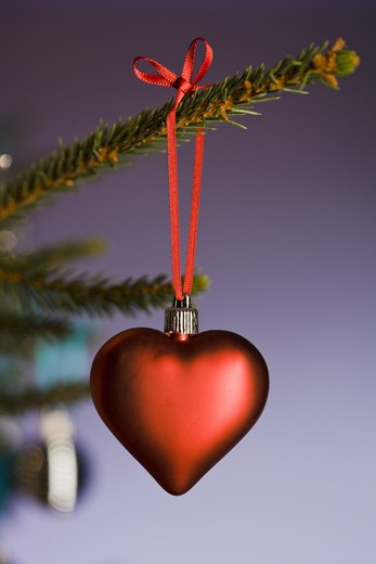 Stock Photo: 4306R-23009 A close-up of a decorated Christmas tree.