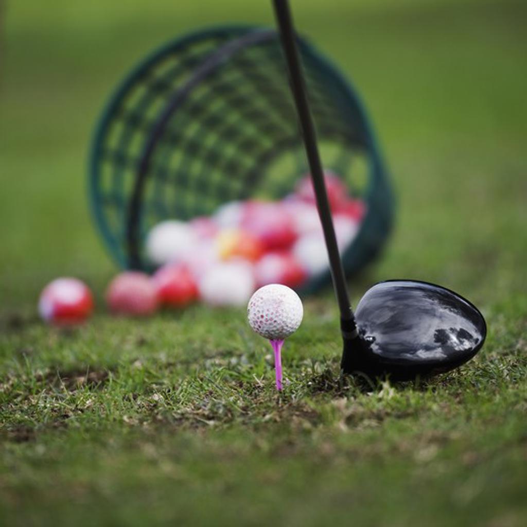 Golf ball on tee beside golf club : Stock Photo