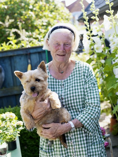Portrait of senior woman holding dog in garden : Stock Photo