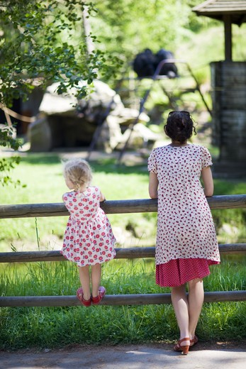 Stock Photo: 4306R-26340 Mother and daughter watching animals at zoo