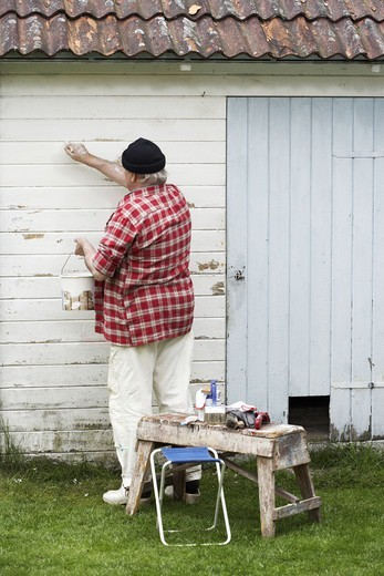 Stock Photo: 4306R-27224 Elderly man painting his summer cottage, Sweden.