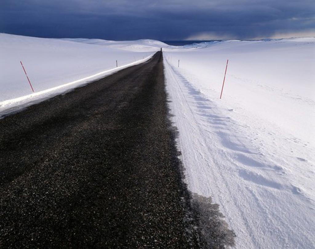 Empty road into wilderness : Stock Photo