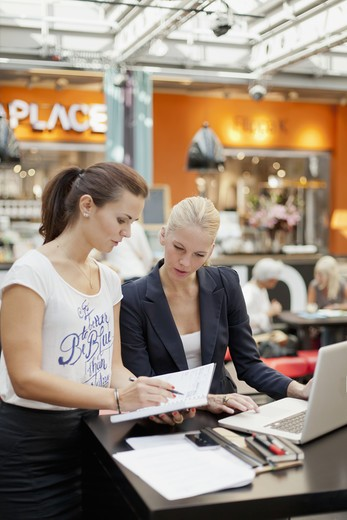 Stock Photo: 4306R-28329 Two young women working with laptop