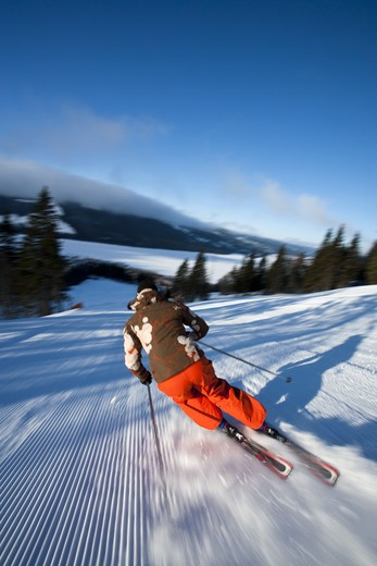 Stock Photo: 4306R-28443 Skier going down slope, rear view
