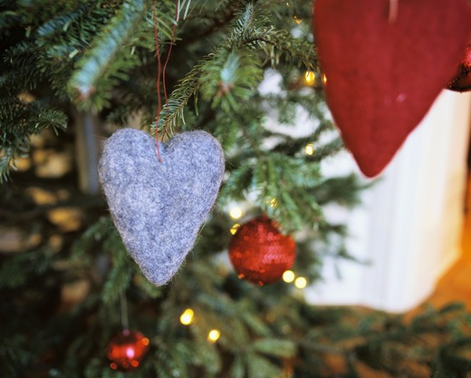 Stock Photo: 4306R-6853 Heart shaped felt ornament on Christmas tree