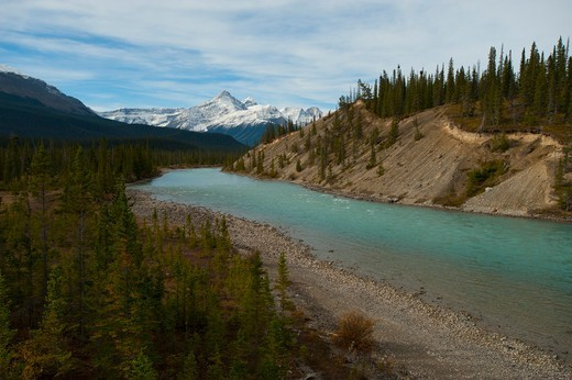 Stock Photo: 4313-1523 Canada, Banff National Park, View of Saskatchewan River along Icefields Parkway