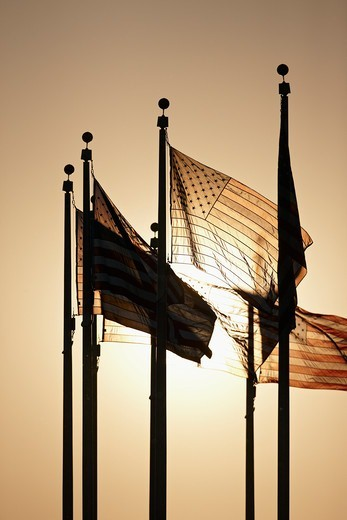 Stock Photo: 4316-1965 American Flags at Base of Washington Monument Backlit by a Setting Sun, Washington, D.C.