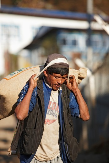 A Nepalese man carries a heavy load of rice, Lukla, Nepal. : Stock Photo