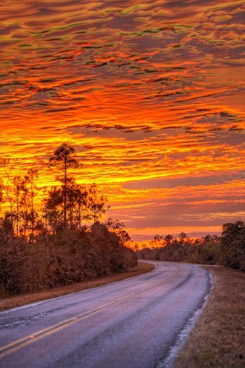 A stunning sunset over the main park road in Everglades National Park. : Stock Photo