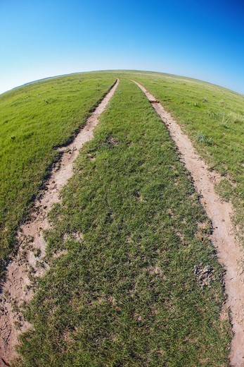 Two track dirt road strikes into the distance on the eastern plains of Colorado. : Stock Photo