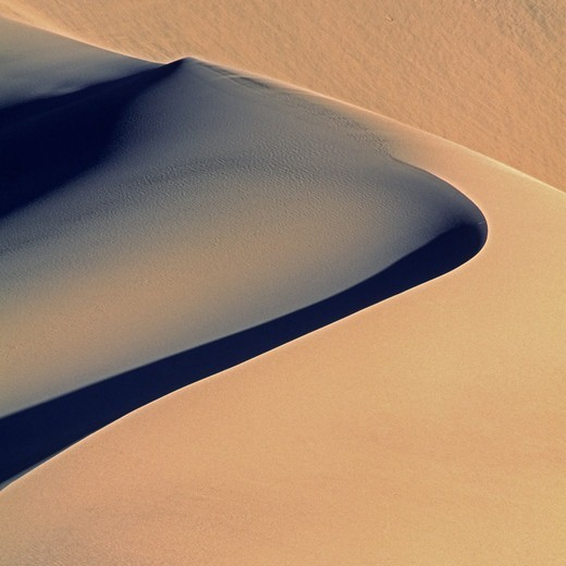 Stock Photo: 4316-3723 Choreography of Light and Shadow Along the Arc of a Dune