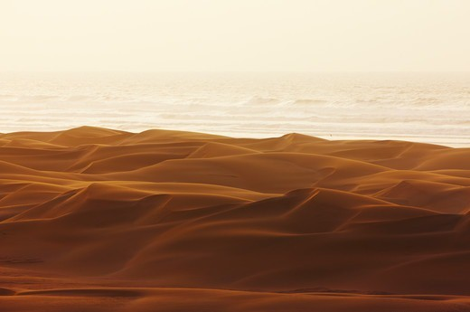 Stock Photo: 4316-5234 Sand dunes where the Sahara Desert meets the sea, southern Morocco, Atlantic Coast