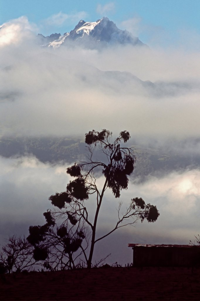 Stock Photo: 4316-563 Parting Mist Reveals the Summit of Volcan Altar