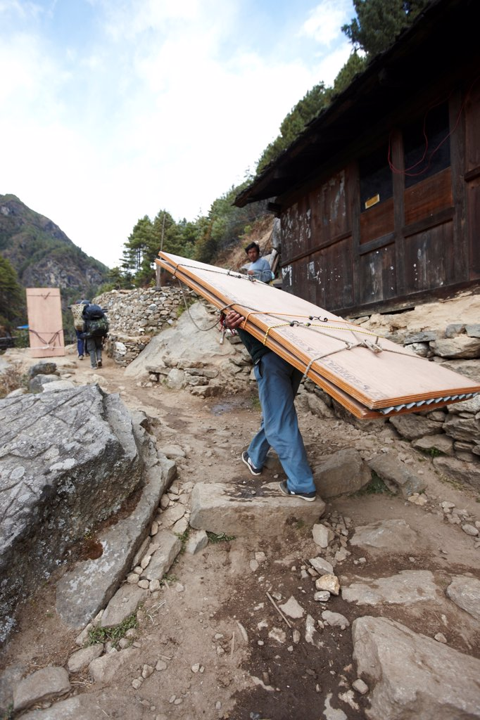 Nepal, Himalaya, Solukhumbu District, Khumbu, Nepalese Sherpa porter carrying load of plywood : Stock Photo