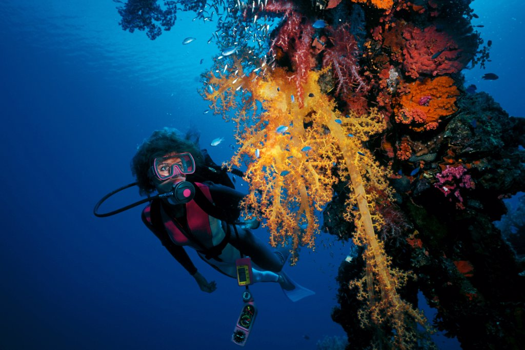 Stock Photo: 4323-294 Scuba Diver on Wreck Site in Truk Lagoon, Micronesia