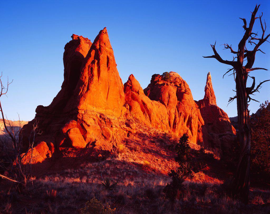 Entrada Sandstone spires illuminated by sunrise, Kodachrome Basin State Park, Utah. : Stock Photo