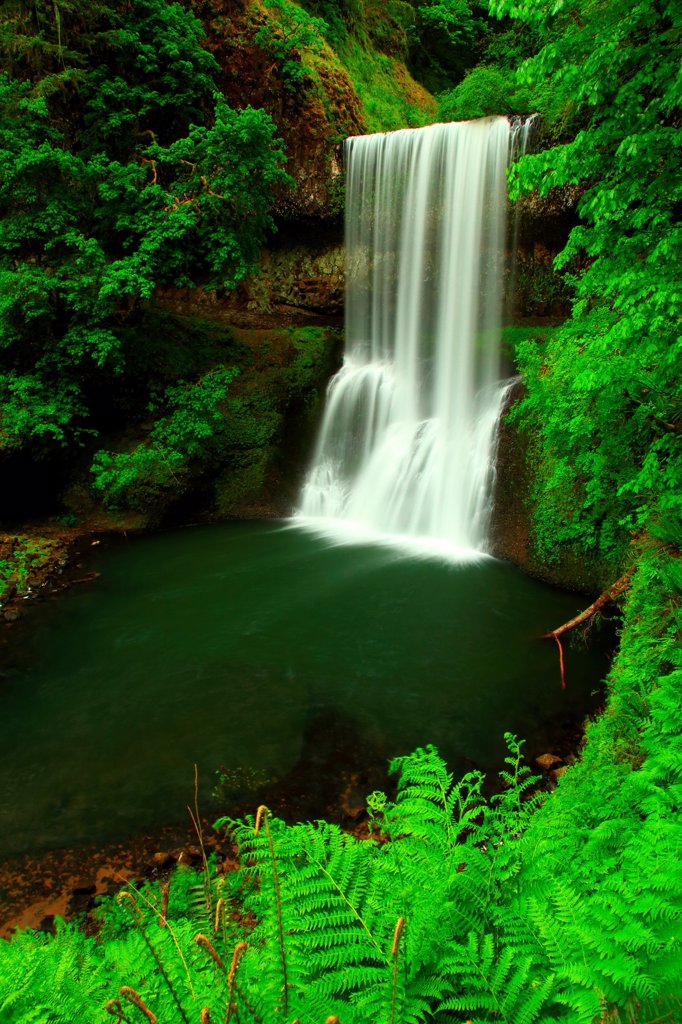 Stock Photo: 4334-1109 USA, Oregon, Silver Falls State Park, Lower South Falls