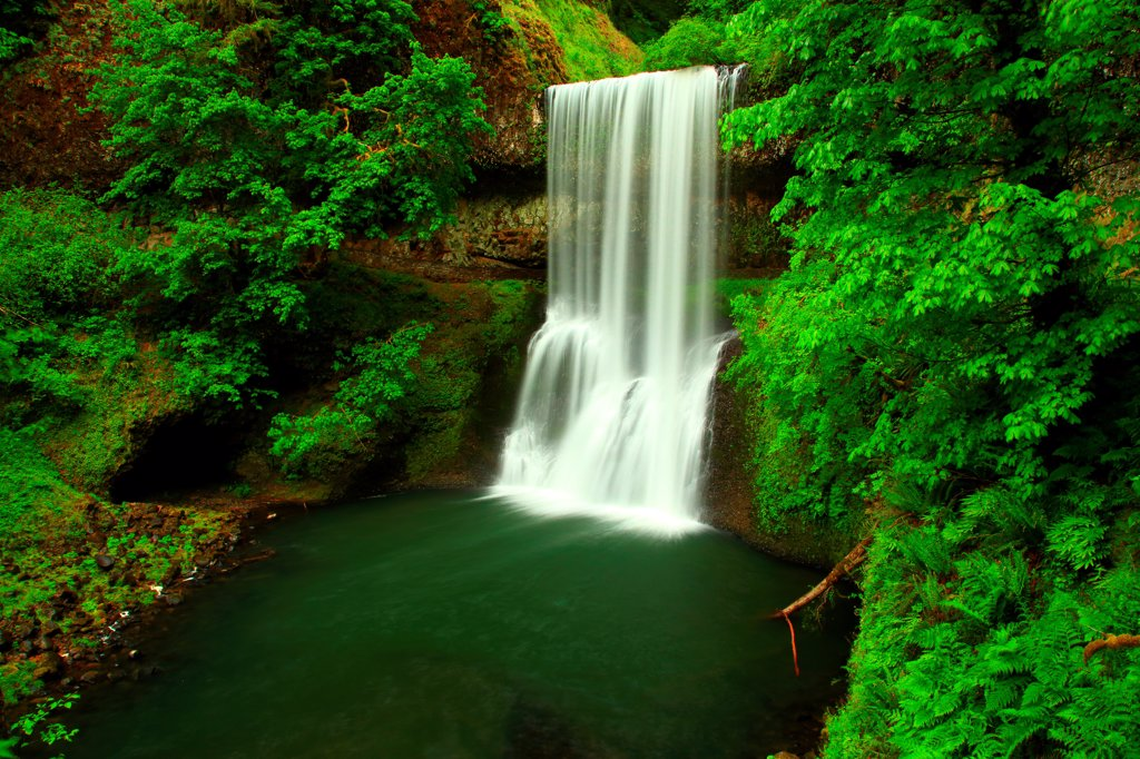 USA, Oregon, Silver Falls State Park, Lower South Falls : Stock Photo