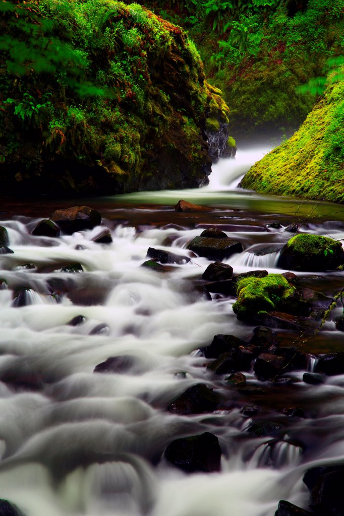 USA, Oregon, Columbia River Gorge National Scenic Area, Bridal Veil Creek : Stock Photo
