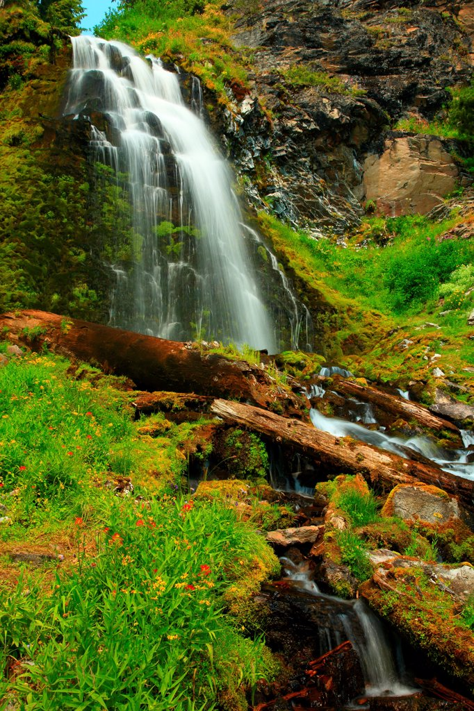 Stock Photo: 4334-1168 USA, Oregon, Wildflowers and Plaikni Falls in Crater Lake National Park
