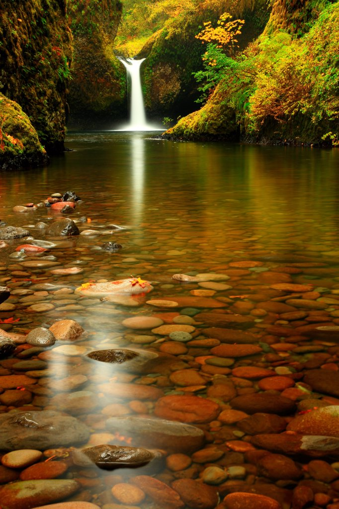 Stock Photo: 4334-1182 USA, Oregon, Fall Colors and Punch Bowl Falls in Eagle Creek Gorge in Columba River Gorge National Scenic Area