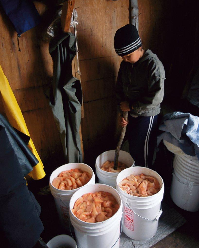Native Diet in Cape Krusenstern, Alaska : Stock Photo