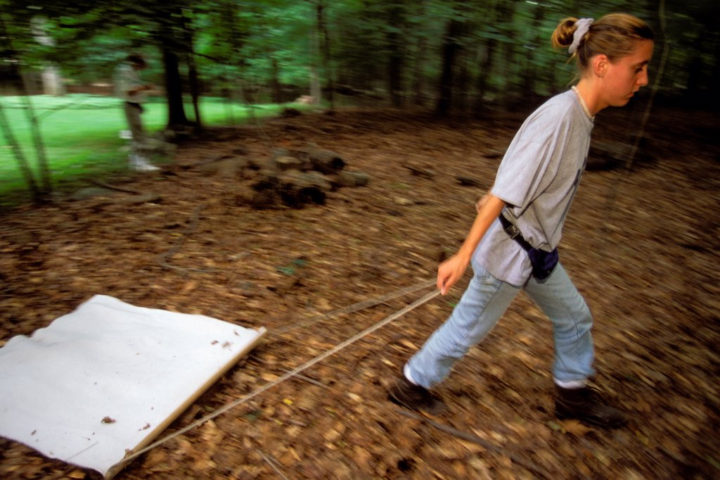 Stock Photo: 4339-869 A Health Worker Dragging a Cloth to Capture Ticks that Carry Lyme Disease