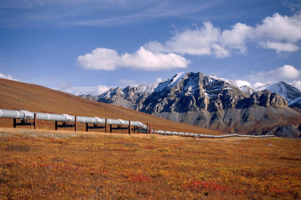 The Trans-Alaskan Pipeline System (TAPS) South Of Prudhoe Bay : Stock Photo