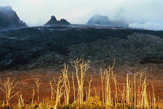 Stock Photo: 4346-168 Kipuka, with Pu'u O'o Vent in Background