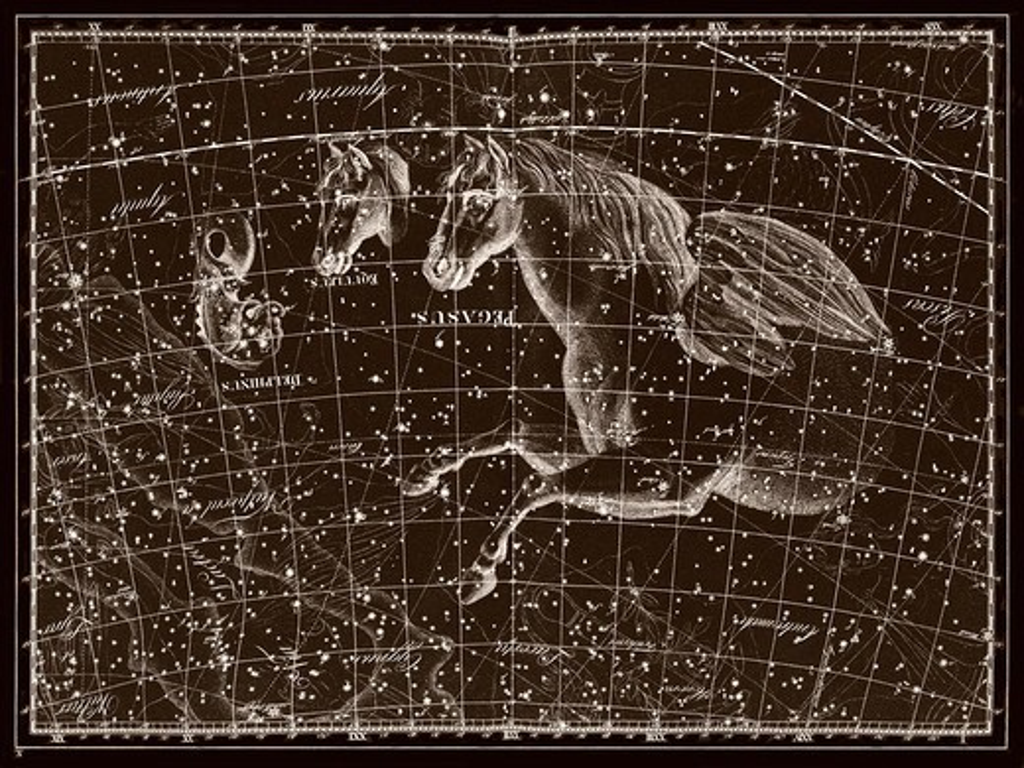Stock Photo: 4351-270 Constellation of Pegasus