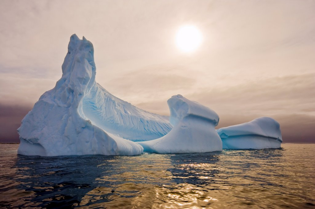 Stock Photo: 4355-1077 Icebergs in Pleaneau Bay Antarctica
