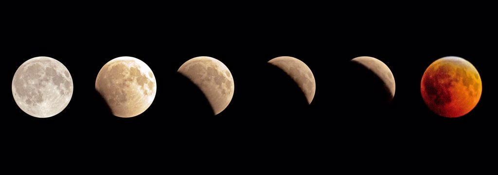 Stock Photo: 4355-1731 The lunar eclipse of 2010 in full view on a near cloudless Miami night.